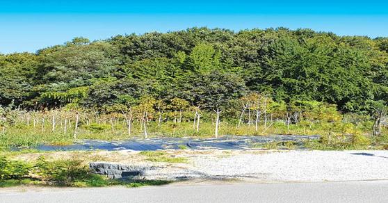 제3 판교테크노개발이 추진되고 있는 경기도 성남시 금토동에서 매각 중인 토지 사진.