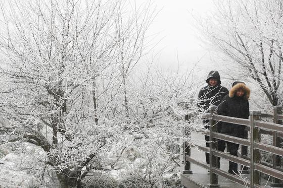 16일 아침 중부지방에 내리는 눈은 낮에 대부분 그칠 것으로 기상청은 예보했다. 절기상 대설이었던 지난 7일 오전 제주 한라산에 눈이 내려 1100고지 찾은 관광객들이 겨울 정취를 만끽하고 있다. [뉴스1]