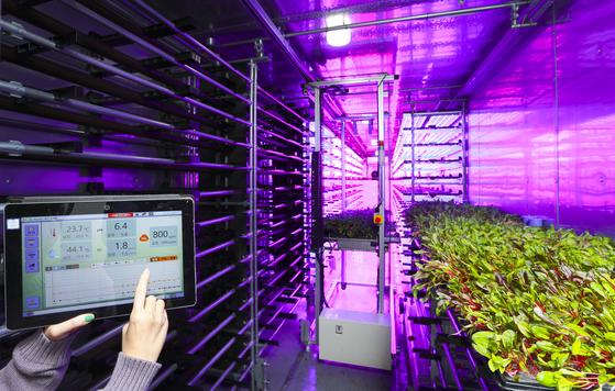 미래원의 컨테이너형 최첨단 식물공장. 온도와 습도·산도·이산화탄소 등이 자동 조절되고 선반형 로봇이 트레이를 넣고 빼며 농사를 짓는다. [임현동 기자]