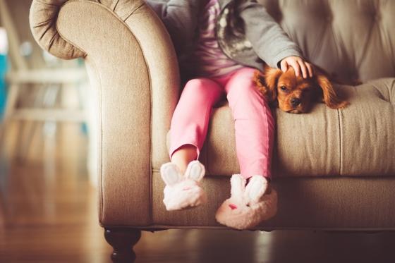 '펫팸', '펫코노미' 등 반려동물 관련 용어가 생겨나고 있다. 이는 반려동물에 대한 전 세계적인 관심과 소유하는 가구가 급속도로 많아지고 있기 때문이다. [사진 pixabay]