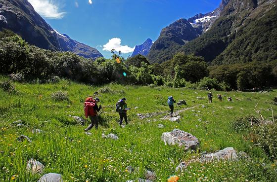 뉴질랜드 남섬 그레이트 웍스(Great Walks) 중 밀퍼드 트랙을 걷고 있다. [사진 박재희]