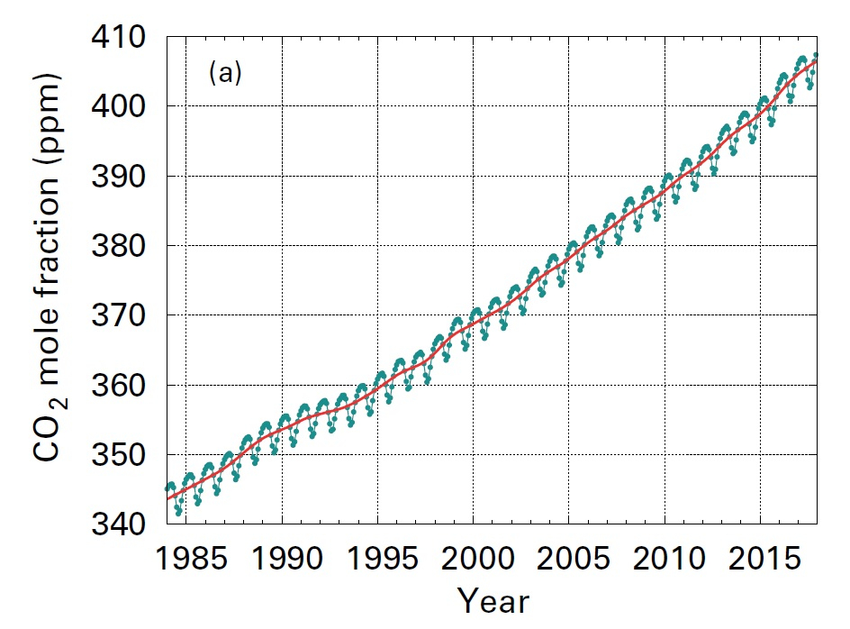 대표적 온실가스인 이산화탄소 농도의 변화. 북반구의 경우 여름철엔 감소했다가 겨울철에는 증가한다. [자료 세계기상기구(WMO)]