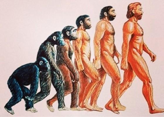 처음에는 잔뜩 웅크린 채 걷다가 나중에는 점점 허리를 펴게 되는 변천의 과정을 담은 진화론 그림. 맨 오른쪽의 허리를 완전히 편 사람의 모습은 적어도 현재로써는 '최종단계'의 상징이다. [중앙포토]