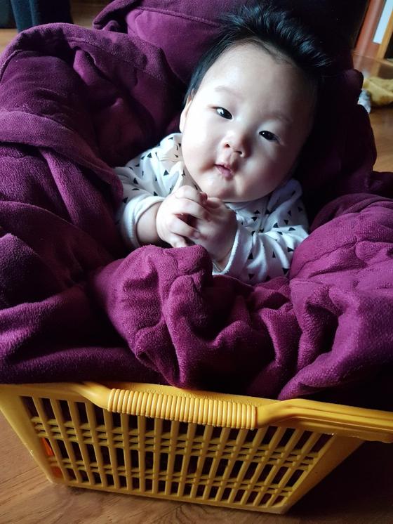 증조할머니의 생활 지혜 두 번째. 플라스틱 바구니 안에 이불을 채워 아직 몸을 못 가누는 아이들을 앉혀두는 의자 대용으로 쓰기도 한다. 도원이가 3~4개월 때 앉혀둔 모습이다. [사진 정주리]