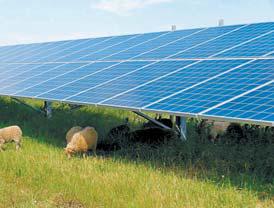 한화의 태양광 제품은 세계적으로 인정받 고 있다. 독일 작센안할트주 태양광발전소.
