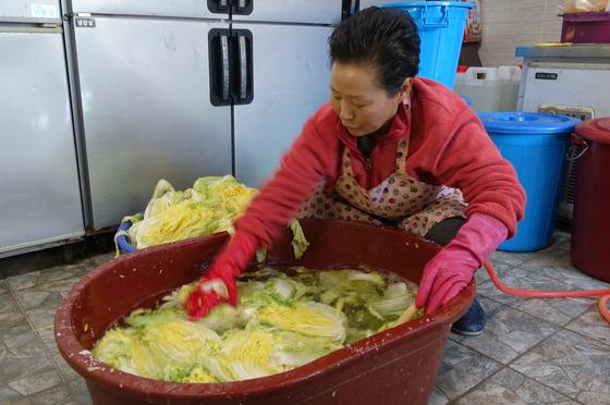 '옥이네밥상' 주인 김옥이씨가 전날 오후 8시에 절인 배추를 다음날 오전 9시에 헹궈 건지고 있다.