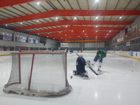 3일 오후 국내 유일의 여자 아이스하키팀인 수원시청 실업팀 소속 선수들이 훈련하고 있다. 김민욱 기자