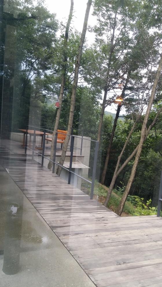 집 전면에 유리창이 끼워지자 굴참나무 숲이 유리창 전면에 비춰들었다. [사진 한순]