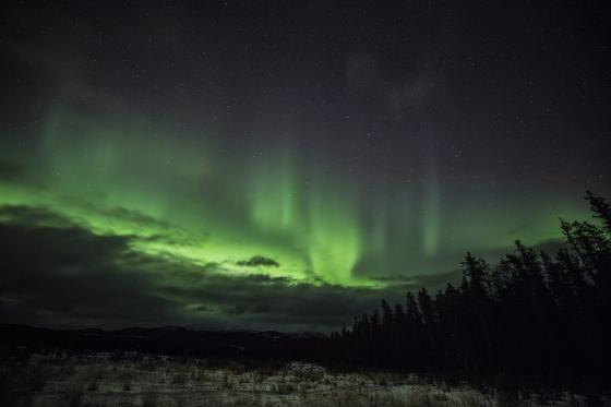 오로라 관측 명당으로 통하는 캐나다 화이트호스. 겨울이면 오로라를 보기 위해 세계 각지에서 여행자가 모여든다. 최승표 기자