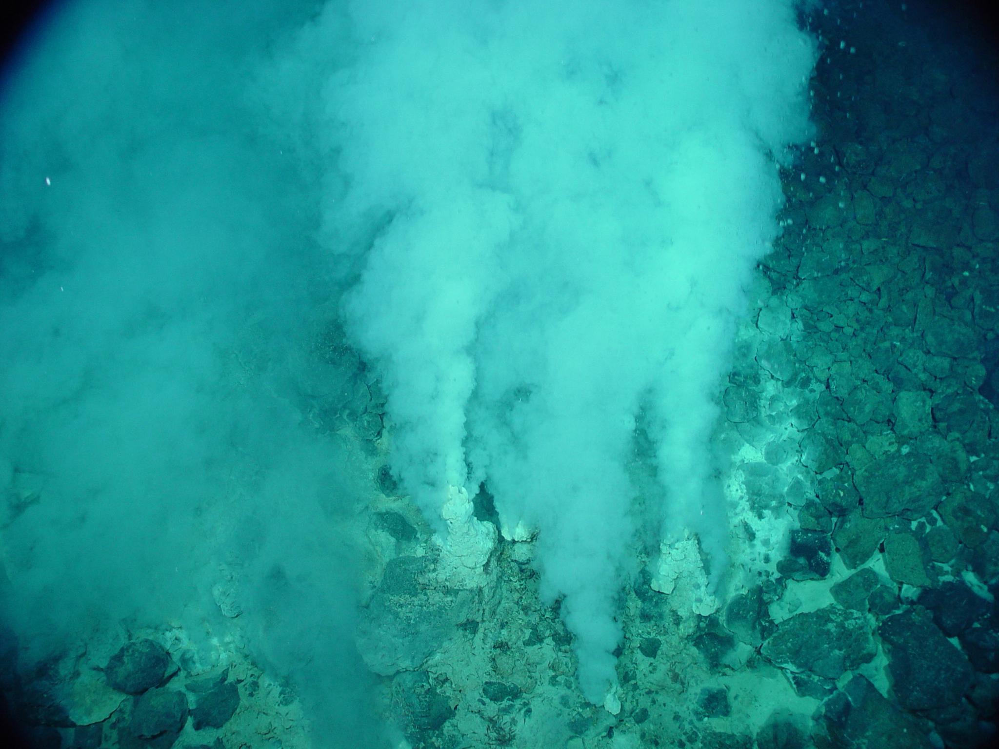심해 열수구. 화산 활동과 관련해 데워진 바닷물이 해저에 생긴 균열을 통해 분출된다. [사진 위키피디아]