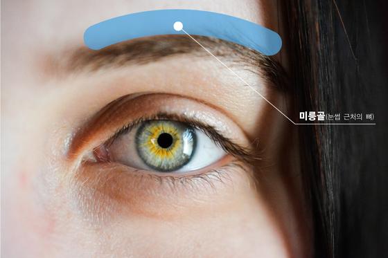 눈 바로 윗부분을 미릉골이라 부르는데, 미릉골통은 눈과 코 주변의 근육이 영향을 미친다. 비염이나 축농증이 있거나, 안구건조증 혹은 눈의 피로가 겹치면 미릉골통이 한층 심해진다. [사진 pixabay]