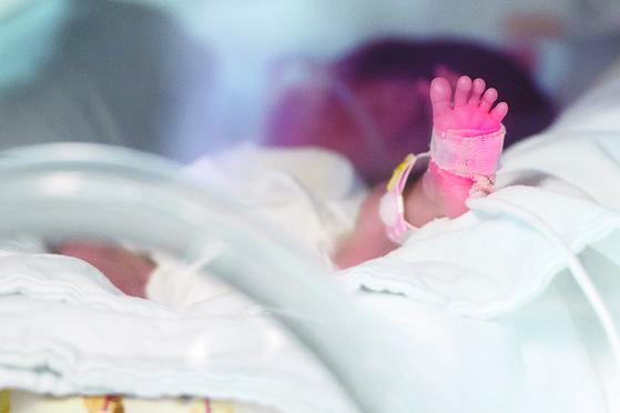 신생아 중환자실. [중앙포토]