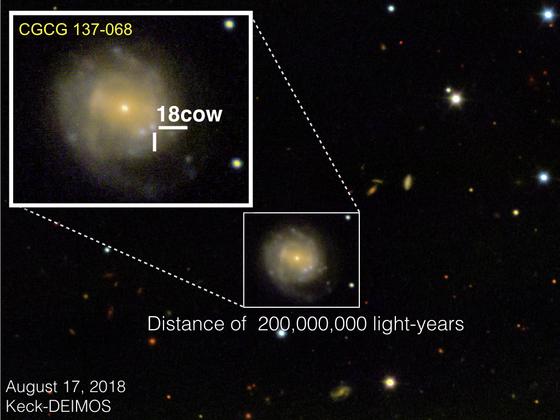 노스웨스턴대가 이끄는 국제연구팀은 2018년 6월 2억 광년 떨어진 곳에서 발생한 폭발 '암소(The Cow)'가 블랙홀 혹은 중성자별의 초기 탄생 순간이라고 결론 내렸다. 암소의 공식 명칭은 AT2018cow다. [사진 W. M. Keck Observatory]