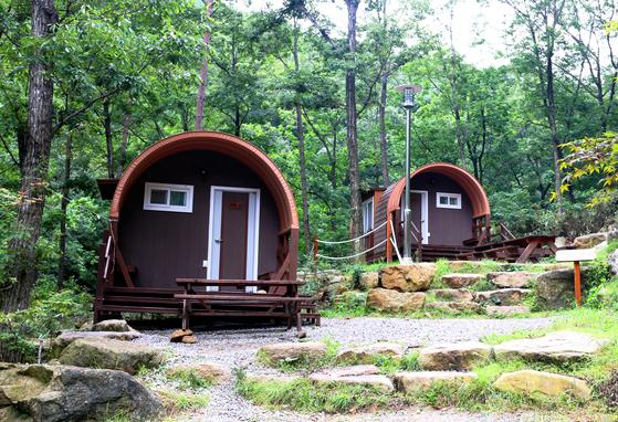 대야산자연휴양림의 자랑인 캐빈. 텐트를 치지 않고도 야영을 즐길 수 있는 시설이다. [사진 국립휴양림관리소]