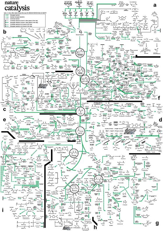 이상엽 KAIST 교수가 개발ㆍ완성한 바이오 기반 화학물질 합성지도. 국제학술지 네이처 카탈리시스에 표지논문으로 14일 게재됐다. [사진 KAIST]