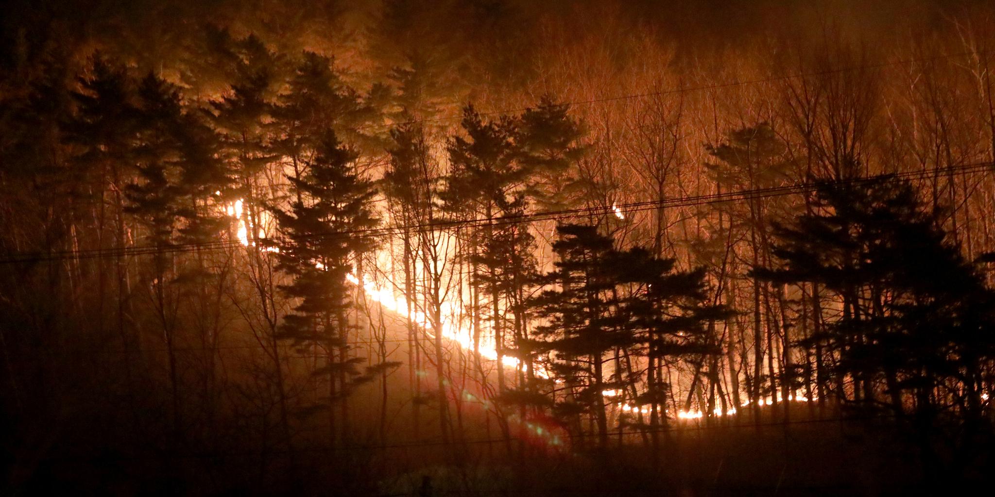 기해년 새해 첫날인 지난 1일 강원도 양양군 서면 송천리 일대 야산에서 발생한 산불이 한밤 중에도 강한 바람을 타고 번지고 있다. [뉴스1]