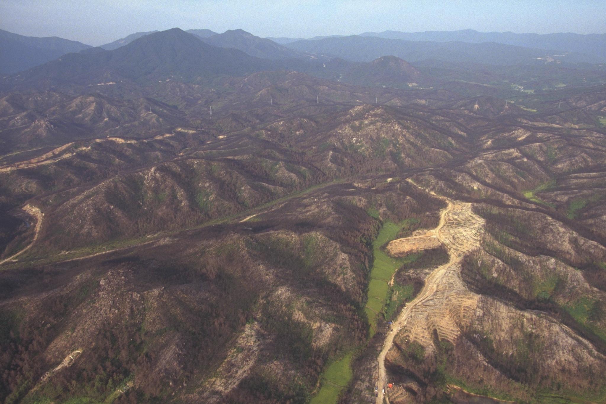 1996년 강원도 고성지역에 발생한 산불 피해 지역 [중앙포토]