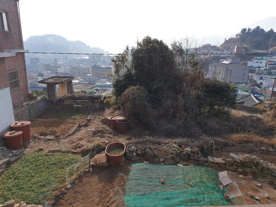 손혜원 의원이 지난 2008년 3월 구입한 경남 통영시 문화동의 주택 부지. 이 터에서 전방에 강구항, 오른쪽에 서피랑, 왼쪽에 동피랑이 보인다. 위성욱 기자