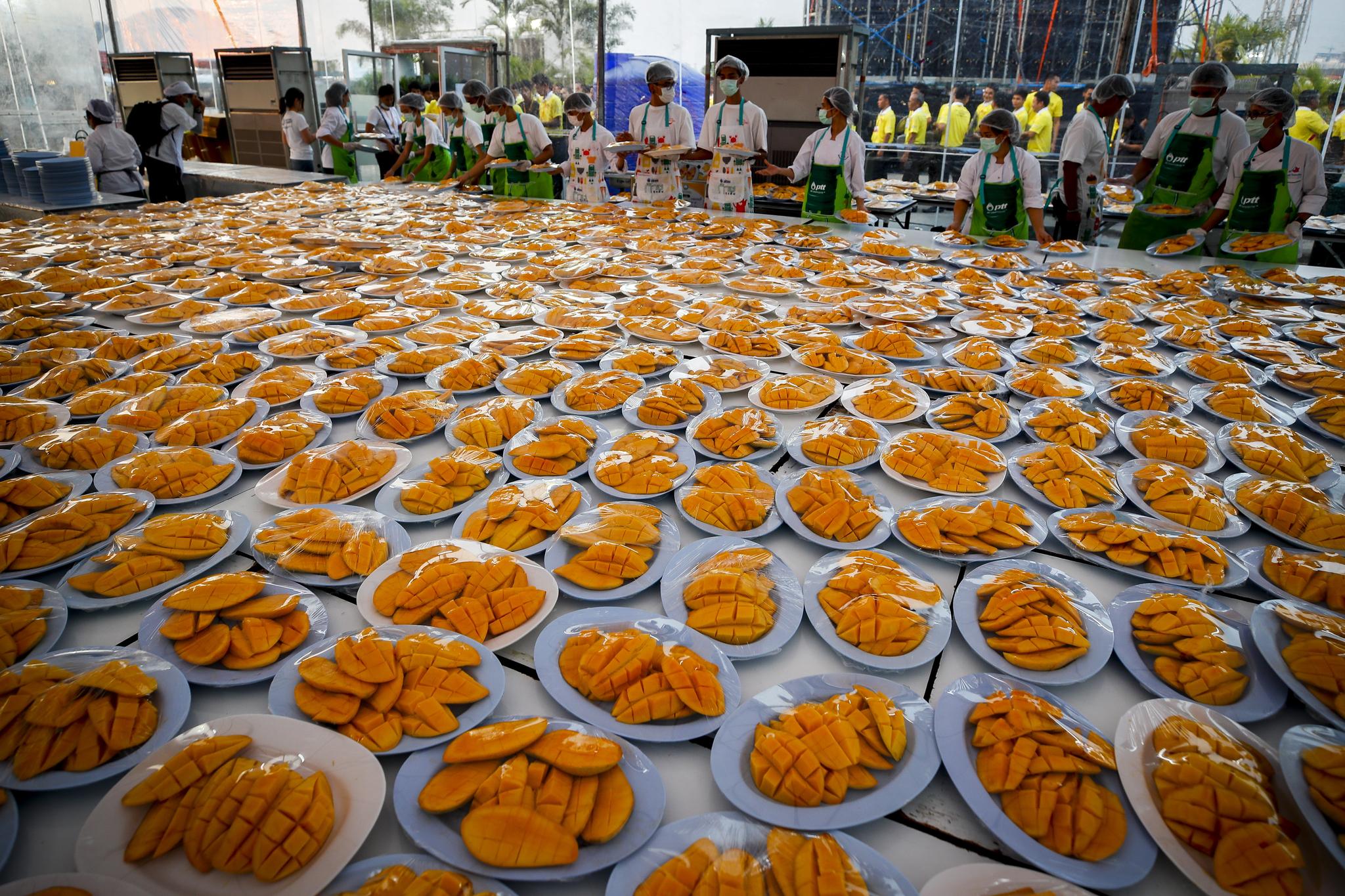만명의 중국인 관광객이 20일 오후 태국 방콕에서 4500kg의 망고를 먹어치우는 사상 최대의 '망고파티'를 즐겼다. 이날 현지 요리사들이 망고음식을 준비하고 있다.[EPA=연합뉴스]