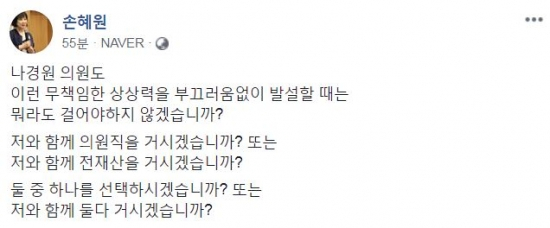 손혜원 의원이 17일 페이스북에 게시한 글. [손혜원 의원 페이스북 캡처]