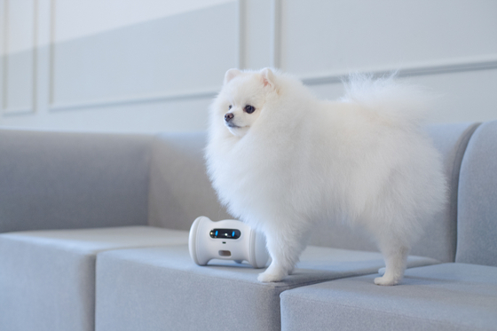 지난해 보상형 크라우드 펀딩에서 가장 많은 금액을 모집한 바램 펫 피트니스 로봇. 반려동물에게 간식을 제공하고 놀아주는 인공지능 피트니스 로봇으로 6억4000만원을 모집했다. [사진 와디즈]