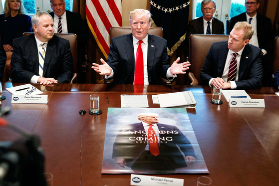 Acting Secretary of the Interior David Bernhardt, left, and acting Secretary of Defense Patrick Shanahan, right, listen as President Donald Trump speaks during a cabinet meeting at the White House, Wednesday, Jan. 2, 2019, in Washington. (AP Photo/Evan Vucci)