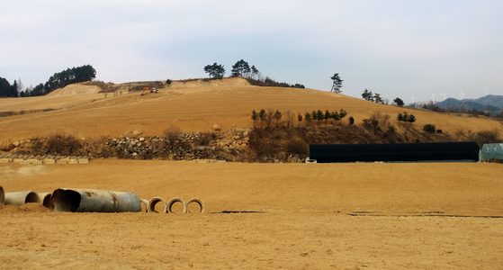 최근 눈다운 눈이 내리지 않으면서 강원 평창군 대관령면의 농경지가 황톳빛 바닥을 드러내고 있다. [연합뉴스]