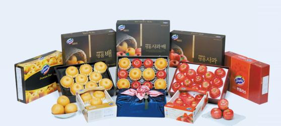 한국과수농협연합회의 프리미엄 과일 공동 브랜드 '썬플러스(Sunplus)'의 과일 선물 세트. [사진 한국과수농협연합회]