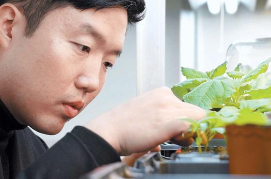 김승일 연구교수는 작물 유전체학 분야의 성과를 바탕으로 농업적인 주요 형질에 관련된 기능유전자를 밝히는 연구를 선도하고 있다. [사진 한광호기념사업회]