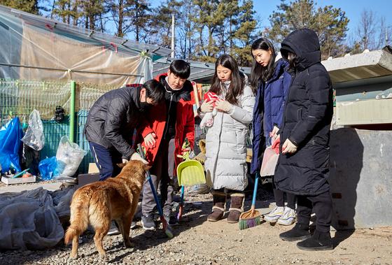 소중 학생기자단이 배우 이 씨를 도와 그의 경기 포천 자택서 반려견들이 더 편하게 놀 수 있는 환경을 만들었다.