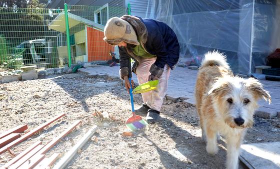 배우 이용녀 씨가 마당에 있는 반려견들의 놀이터를 청소하고 있다.