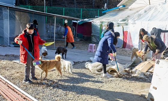 소중 학생기자단이 반려견 울타리 안 청소에 나섰다.