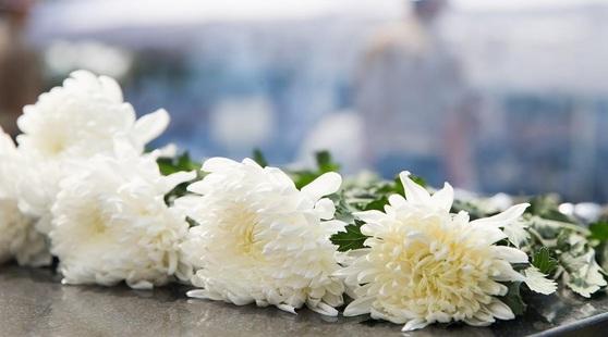 보건복지부가 31일 타인의 생명을 구하고자 자신을 희생한 7명을 의사상자로 인정했다. [중앙포토]