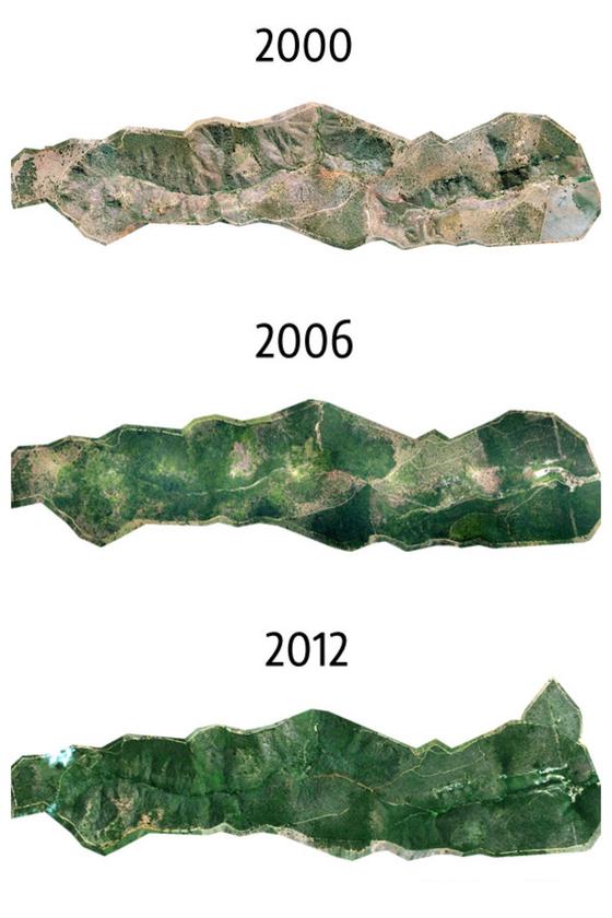 2000년과 2006년 그리고 2012년 숲의 변화를 보여주는 항공 사진. [사진 인스티튜트 테라]