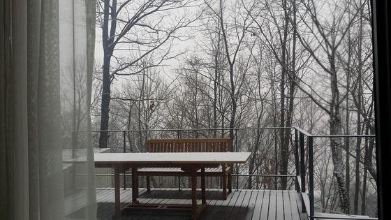 일상의 관성에서 간신히 벗어났을 때 한 걸음 물러나 나와 세상을 바라볼 수 있었다. 시골집에 고요히 앉아 겨울나무 빈 가지를 바라보고 있노라면 많은 문제들이 자명하고 단순해진다. [사진 한순]