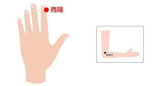 왼쪽은 소화불량에 효과적인 상양혈. 급체했을 때 손을 따는 부위이기도 하다. 가벼운 설사 증상에는 오른쪽 사진의 곡지혈을 누른다.