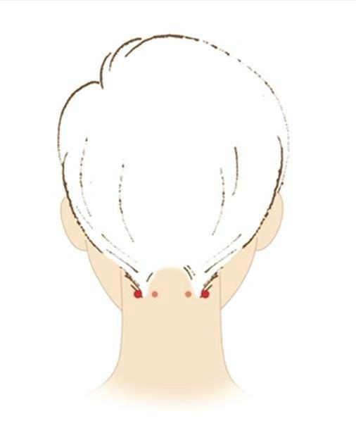 굳은 등과 목 근육 풀어주는데 효과적인 풍지혈. [사진 중앙포토]