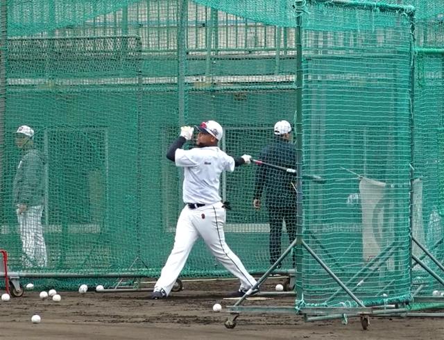 일본 오키나와 스프링캠프에서 타격 훈련 중인 페르난데스. 베어스포티비 캡처