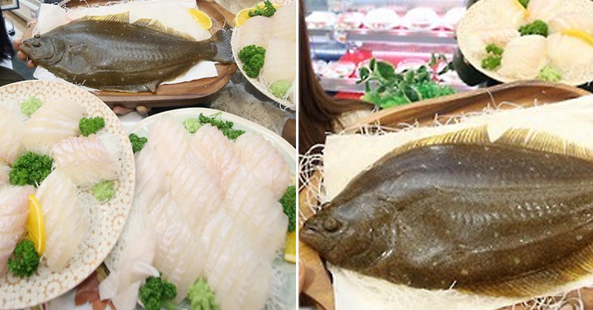 광어 가격이 큰 폭으로 하락하면서 광어 생산 어가의 부담이 지속적으로 늘어나고 있는 것으로 드러났다. [연합뉴스]