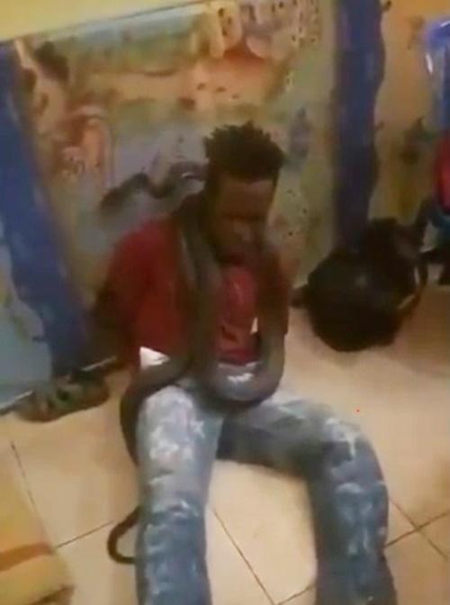 소셜미디어에는 11일 인도네시아 경찰이 뱀을 이용해 용의자를 고문하는 영상이 퍼지고 있다. [트위터 캡처]