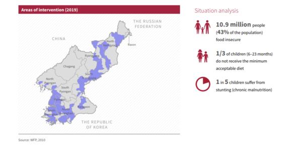 유엔식량농업기구(FAO)가 11일 내놓은 '2019 북한의 인도주의 필요와 우선순위' 보고서. [FAO 웹사이트]