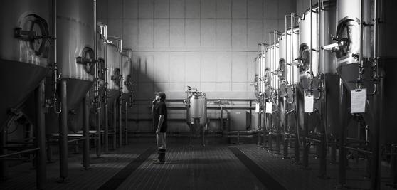 맥주 양조장 코리아크래프트브류어리의 모습. 국내에 문베어브루잉, 브루독 등 맥주 양조장 수가 급증하고 있다. [사진 코리아크래프트브류어리]