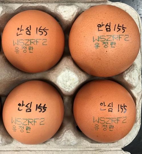 회수 대상 계란 [제주도 제공=연합뉴스]