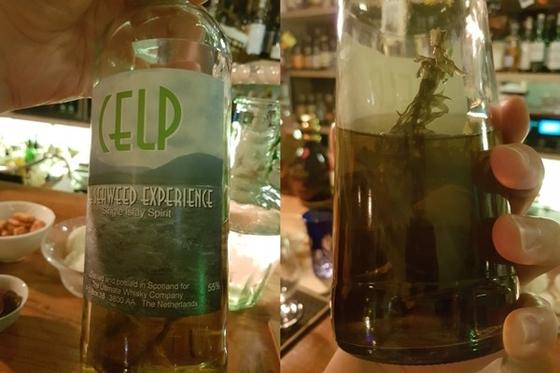 네덜란드의 스피릿, CELP. 병 안에 해초가 담겨 있다. 스모키한 맛과 바다내음이 절묘한 조화를 보여준다. [사진 김대영]