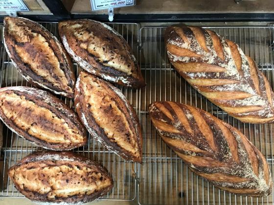 오월의종에서 파는 대표 하드롤로 왼쪽은 통밀양파빵, 오른쪽은 르방내츄럴이다. 하드롤은 겉은 바삭하고 속은 부드러운 게 특징이다. [사진 오월의종]
