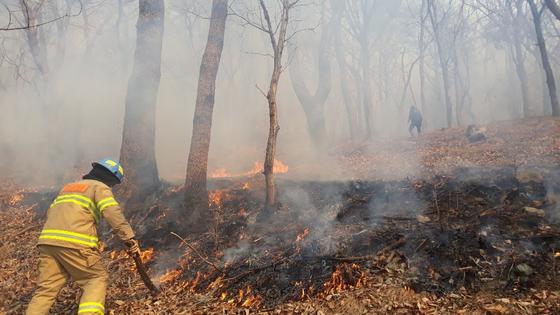 지난 1월 부산 기장군 철마면 소산마을 뒤편에 발생한 산불. 이달 4일까지 총 191건의 산불이 발생했다. [부산소방재난본부 제공]