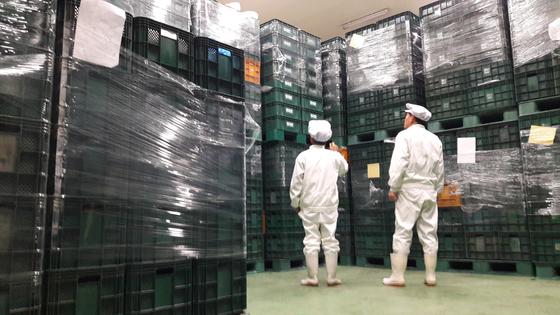 단양 아로니아영농조합법인 냉동창고에 지난해 생산한 아로니아 100t이 쌓여있다. [사진 단양아로니아영농조합법인]