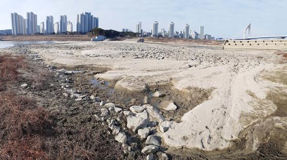세종보 개방으로 물이 없는 금강이 사막처럼 변했다. 정부는 세종보 해체를 추진하고 있다. 프리랜서 김성태