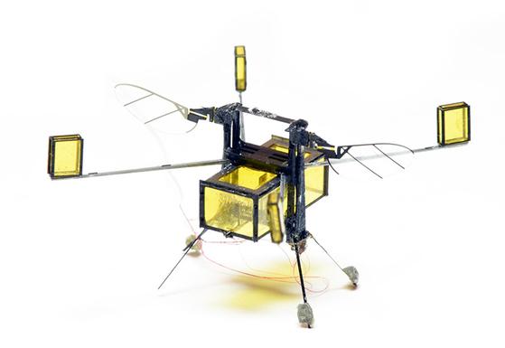 로보비(RoboBee)는 2cm밖에 되지 않는 초소형 드론이다. 물을 통해 에너지를 얻는다는 특징이 있다. [사진 하버드대학교]