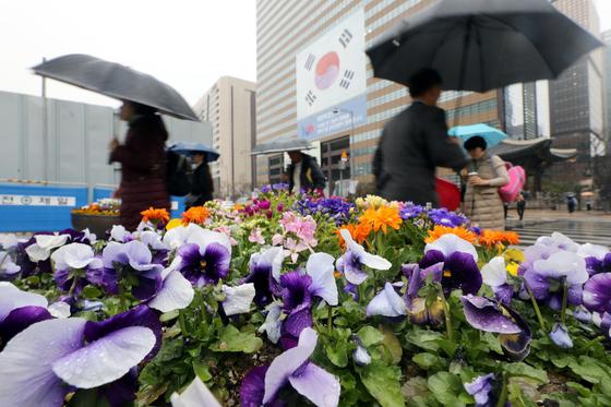미세먼지와 함께 봄비가 내린 20일 오후 우산을 쓴 시민들이 서울 세종대로 사거리를 지나고 있다. 시민들은 봄비가 초미세먼지를 씻어내 주기를 기대했지만, 주의보는 쉽게 해제되지 않았다. [뉴스1]